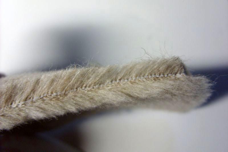Серебристый верблюд - вид сбоку